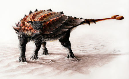 <i>Ziapelta</i>, one of the new open access dinosaurs named in 2014. Illustration by Sydney Mohr, from Arbour et al. 2014. CC-BY.
