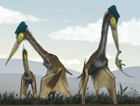 Pterosaurs feasting, in a classic image by Mark Witton. CC-BY, from Witton & Naish 2008.