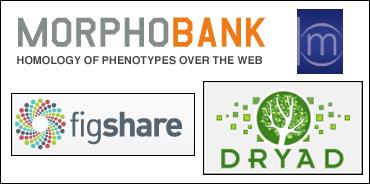 repository logos