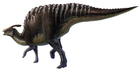 Adult <i>Saurolophus</i>, life restoration by L. Xing and Y. Liu, from Bell 2012.