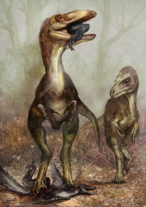 Sinocalliopteryx eating a hapless dromaeosaur. From Xing et al. 2012. CC-BY.